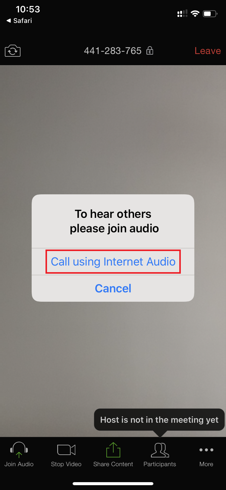 Zoom Mobile Test Call using Internet Audio